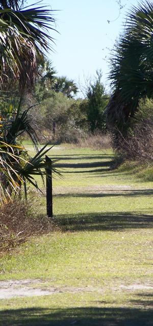 Single Path 0313