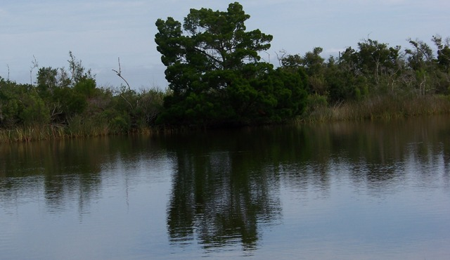 Reflecting Pool 100413