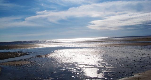 Sun and Sand 1013