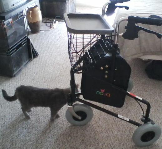Wheels 0716